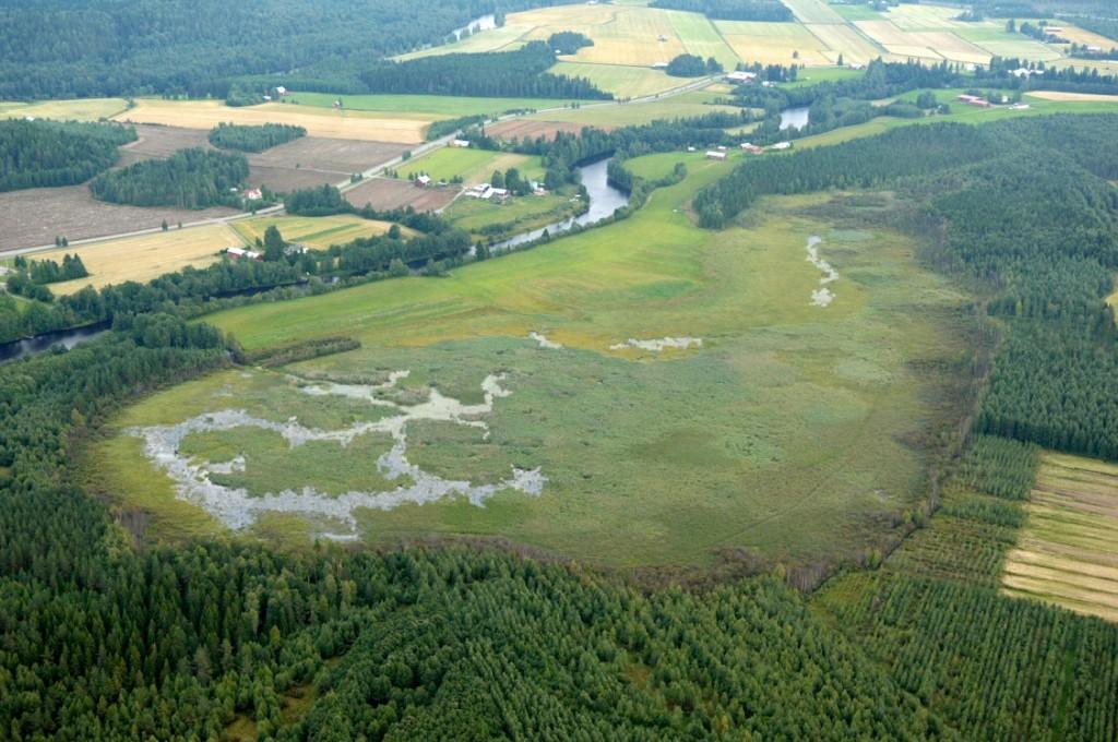 Uudenkylän lampi. Kuva: Ympäristokeskus